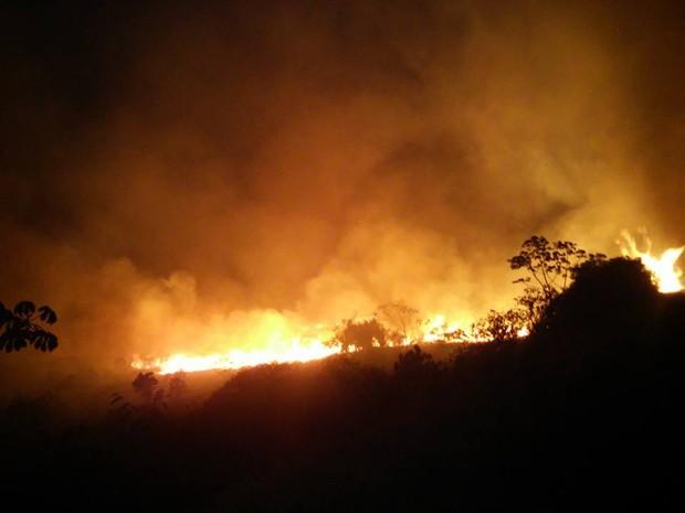 Equipes tentam combater chamas na região do Mucugezinho (Foto: Edmar de Lima de Carvalho/ICMBio)