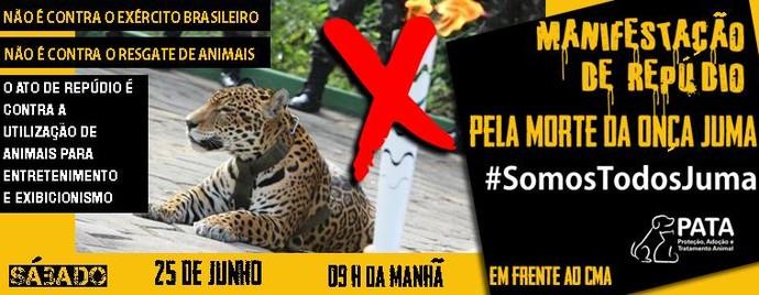 ONG organiza protesto pela morte da onça Juma, no Amazonas (Foto: Divulgação)