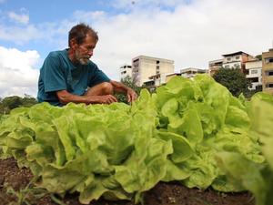 Antônio irriga plantação com água de lençol freático em Colatina, no Espírito Santo (Foto: Reprodução/ TV Gazeta)