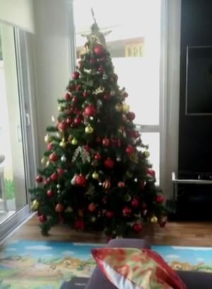 A árvore de Natal de Wanessa não tem nada de 'capenguinha', não é mesmo? (Foto: TV Globo)