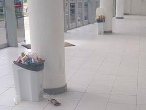 Latas de lixo cheias, na universidade (Foto: Lais Mongin/ VC no G1)