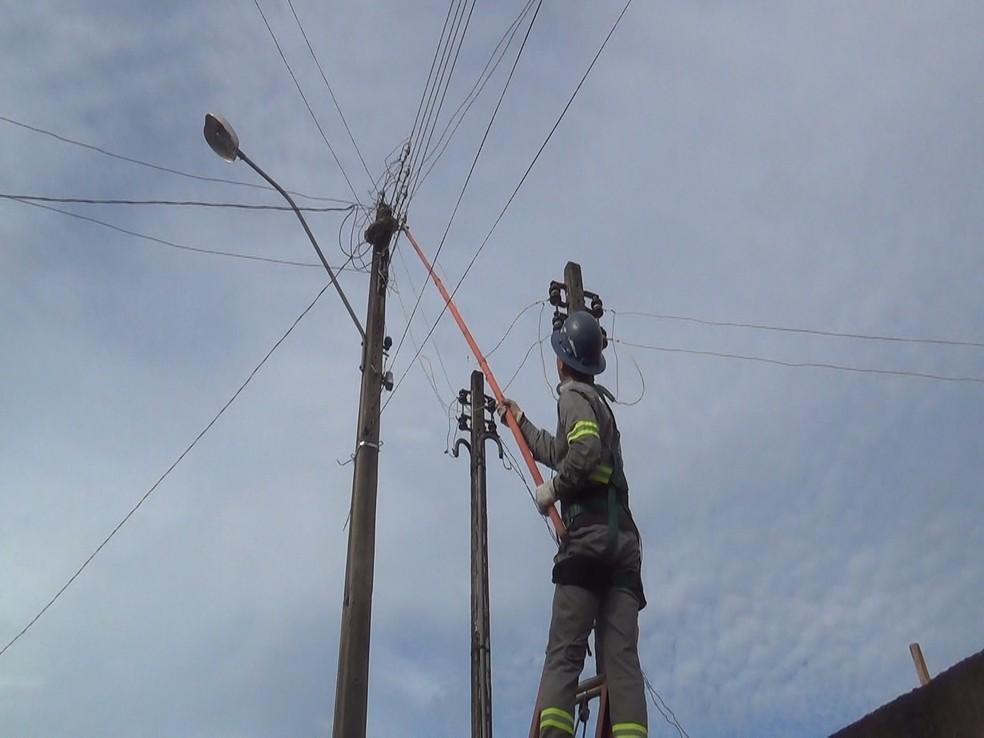 Bombeiros solicitaram auxílio da companhia de energia para que nem a cobra e nem os profisisonais se machucassem (Foto: Ariquemes 190/Reprodução)