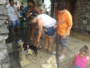 Evento contou com adoção de animais abandonados (Foto: Divulgação/Prefeitura de São Vicente)