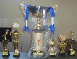 Troféus da Copa TI de Futsal em Uberlândia, MG (Foto: Divulgação/Copa TI)