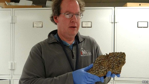 Timothy McCoy gerencia um acervo de 35 mil amostras de meteoritos (Foto: BBC)