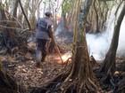 Bombeiros combatem incêndio em vegetação na Praia do Forte, na Bahia