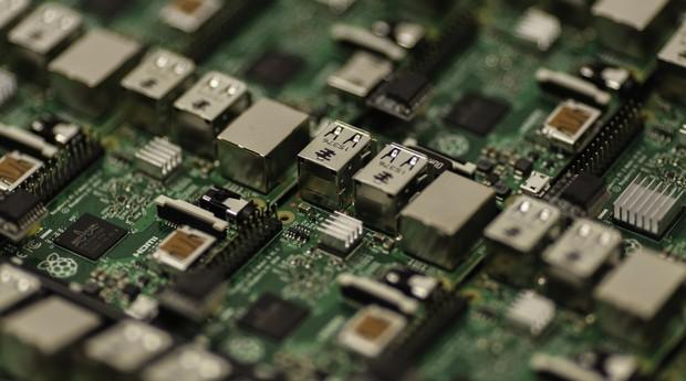 Chip (Foto: Reprodução/Pexels)