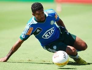 Vilson Palmeiras (Foto: Marcos Ribolli / globoesporte.com)