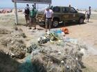 BM recolhe redes de pesca ilegais e animais mortos no litoral gaúcho
