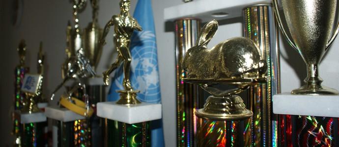 Na estante, prêmios de uma longa caminhada. (Foto: Davidson Fortunato/GE)