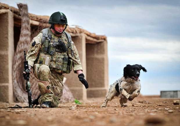 Foto sem data mostra o soldado Liam Tasker e seu cão farejador Theo no Afeganistão (Foto: AP)