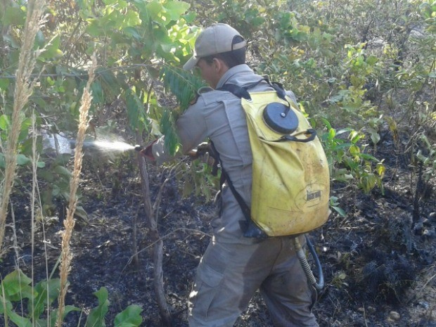 Incêndio criminoso no Parque Zé Bolo Flô, em Cuiabá, consumiu quase 2 hectares. (Foto: Divulgação/Sema)