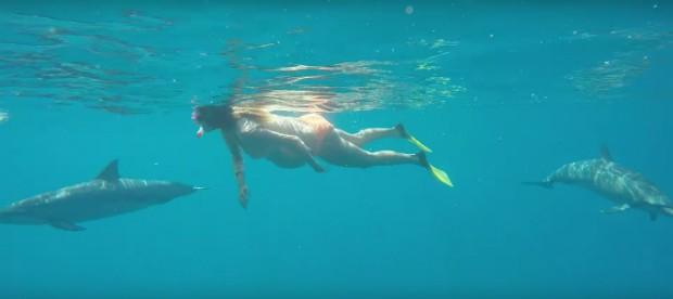 Americana planeja parto no mar com golfinhos (Foto: Reprodução/YouTube)