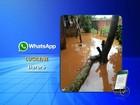 Temporal de meia hora deixa casas alagadas no Jd. Paulicéia em Itararé