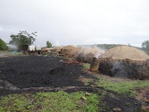 Carvoarias não possuíam licenciamento ambiental. (Foto: Divulgação/Idaf)