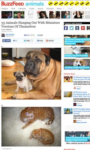 """Site montou lista de 35 animais com filhotes que são semelhantes a ele (Foto: Reprodução/""""Buzzfeed"""")"""