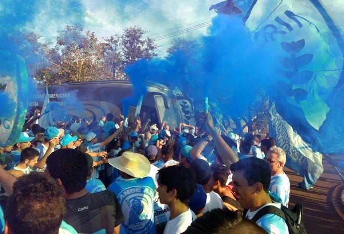 Festa torcida Londrina (Foto: Vinicius Frigeri/RPC)