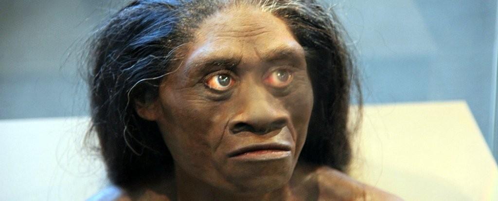 Espécie Homo floresiensis foi apelidada de hobbit por causa da baixa estatura (Foto: Tim Evanson/Flickr)