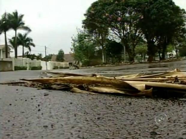 Moradores reclamam que a falta de limpeza das ruas agrava o acúmulo de lixos nas calçadas e guias. (Foto: Reprodução TV Tem)