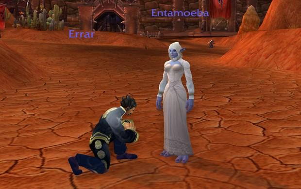 'Errar' (à esq.) é o personagem de Renan e, à direita, 'Entamoeba', heroína de Dayane. Os dois vestidos com as roupas de seu futuro casamento dentro de 'World of Warcraft'  (Foto: Reprodução)