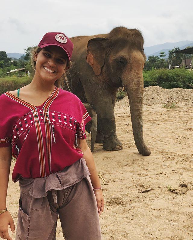 Giulia Costa se diverte dando banho em elefantes (Foto: Reprodução/Instagram)