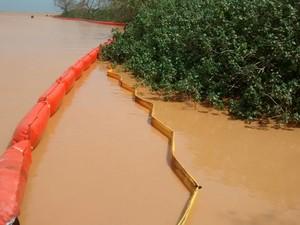 Bóis de contenção na impediram passagem da lama (Foto: Anelice Sena/ TV Gazeta)