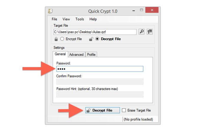 Inserindo a senha para abrir um arquivo encriptado pelo Quick Crypt (Foto: Reprodução/Marvin Costa)