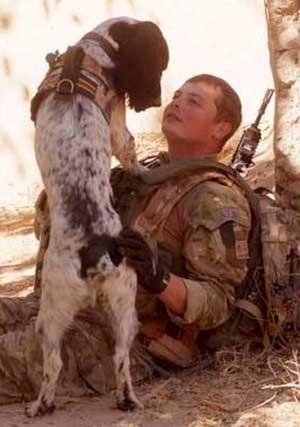 Theo morreu uma hora após seu dono morrer em combate, em 2011 (Foto: AP)