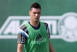 Moisés é regularizado e pode fazer estreia pelo Palmeiras no sábado