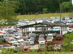 Pátio de carros apreendidos em São Carlos, SP (Foto: Reprodução/EPTV)