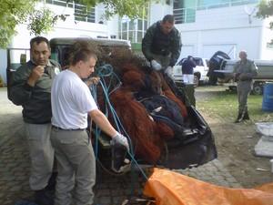 Redes usadas na pesca predatória serão incineradas (Foto: Julieta Amaral/RBS TV)