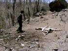 Agricultores abandonam terras por causa de prejuízo com a seca em MG