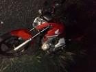 Motociclista morre após bater de frente contra caminhão na GO-305