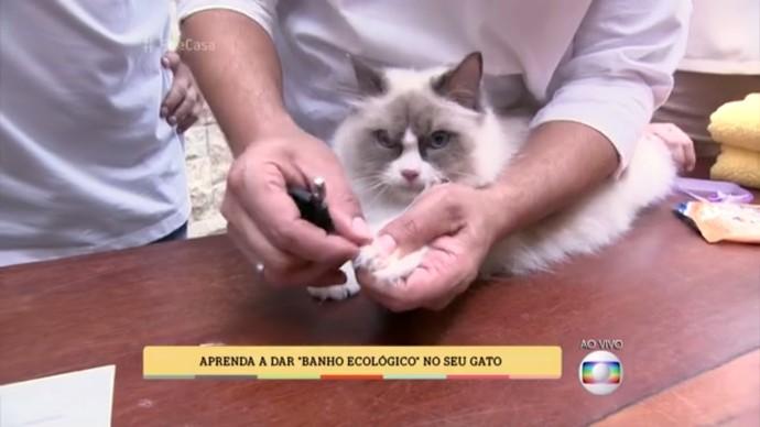 Val Santarem ensinou a dar um banho ecológico utilizando lenços umedecidos (Foto: TV Globo)