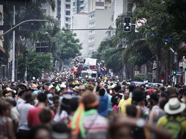 8/2 - Bloco Acadêmicos do Baixo Augusta atrai multidão à região central da Capital paulista (Foto: Caio Kenji/G1)