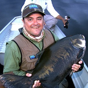 Tambaquis desafiam pescadores (Carlos Alberto Coutinho/ TG)