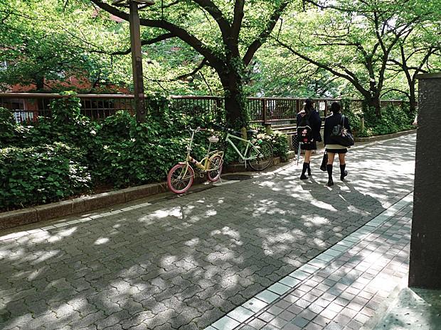 Tóquio também foi registrada pelo estilista (Foto: Alexandre Herchcovitch/Divulgação)