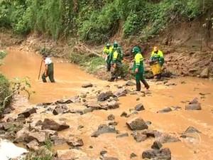 Morador registra milhares de peixes mortos em córrego de Salto (Foto: Reprodução/TV TEM)