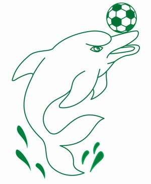 Boto será o mascote do novo clube do oeste do Pará (Foto: divulgação/ Tapajós Futebol Clube)