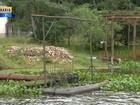 Alteração da água no rio Gravataí prejudica abastecimento na cidade