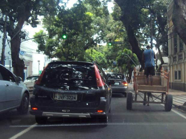 Companhia de Transportes de Belém estima que existem 1.700 carroceiros nas ruas da capital (Foto: Thais Rezende/ G1 PA)