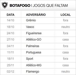 Botafogo_9-ultimas_rodadas (Foto: infoesporte)