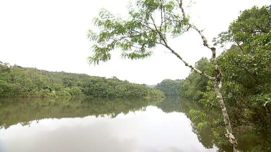 Área de Mata Atlântica preservada é destaque no Parque Intervales