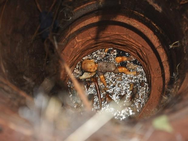 Boneca da criança foi jogada junto com os corpos no poço (Foto: Nelson Reys)