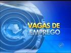 PATs da região de Itapetininga divulgam 177 vagas de emprego
