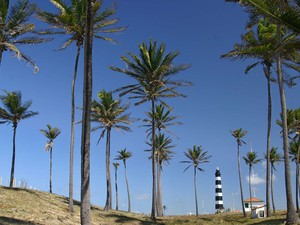 Touros (Foto: Canindé Soares)