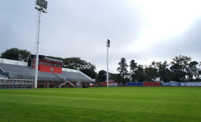 Novo gramado do Estádio Pedro Basso, em Foz do Iguaçu, é semelhante ao usado nas arenas onde serão realizados os jogos do Mundial (Foto: Fabiula Wurmeister)