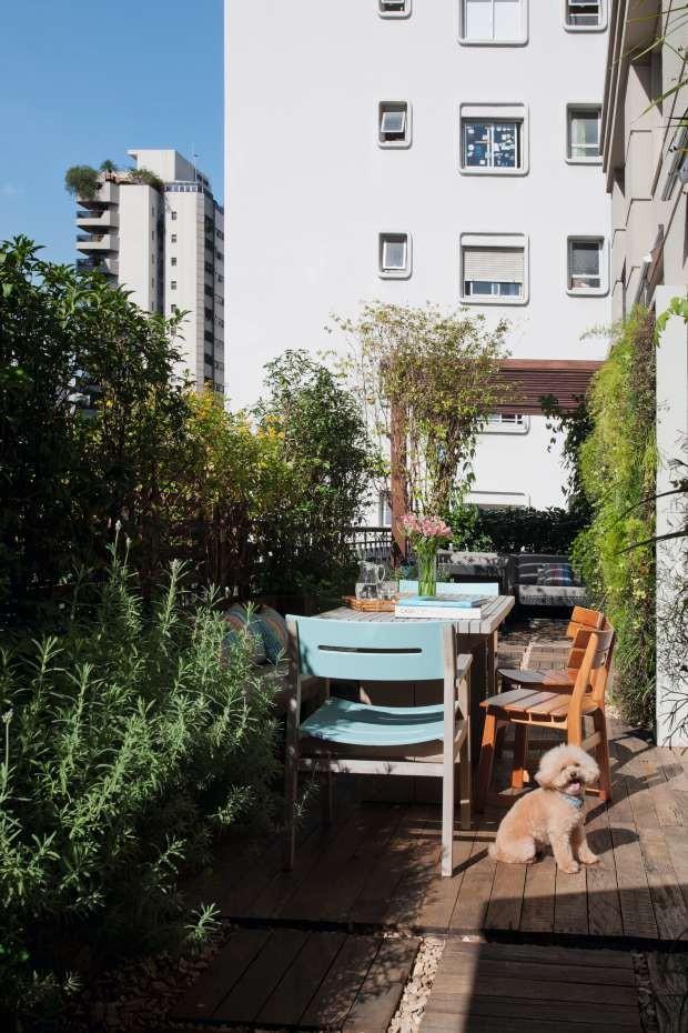 Poodle em jardim com madeira rústica, lavanda, grama-amendoim, jasmim de madagascar (Foto: Pedro Abude/Editora Globo)