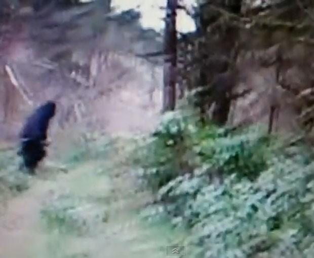 Vídeo voltou a levantar especulações sobre a existência do pé-grande. (Foto: Reprodução)