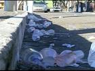 Foliões deixam rastro de lixo em praia de Campos, no RJ